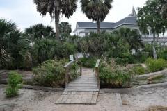 Bridge over pond in the Sabal Palm Sanctuary garden