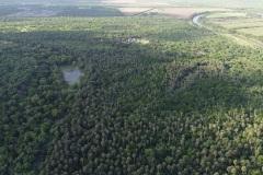 Sanctuary aerial photo