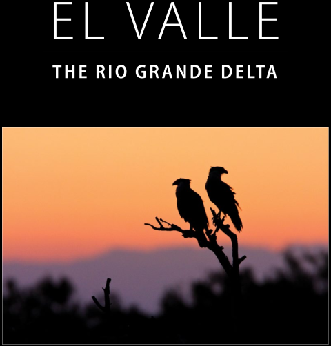 Front Cover of El Valle