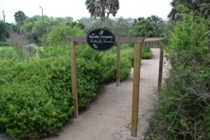 Pergola in the Sabal Palm Sanctuary garden